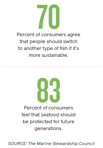 Sustainable seafood infographic