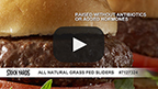 All Natural Grass Fed Sliders