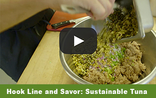 Hook Line and Savor: Sustainable Tuna
